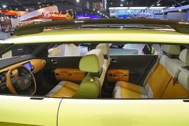 Citroen SUV (02)