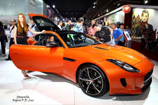 Jaguar (01)