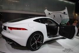 Jaguar (03)