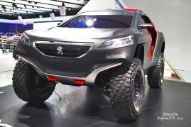Peugeot 200S DKR (01)