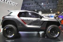 Peugeot 200S DKR (02)