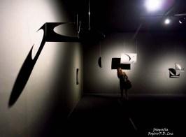 Bienal São Paulo 2014 (10)