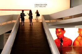 Bienal São Paulo 2014 (28)