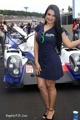 Em 2º largou o Toyota de Anthony Davidson e Sébastien Buemi que conquistaram antecipadamente o título do campeonato de pilotos