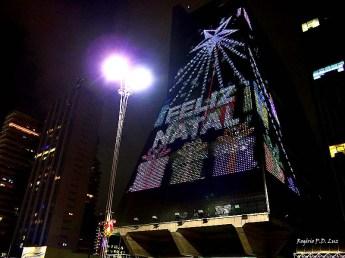 Natal Av Paulista 2014 (19)
