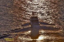 MSC Poesia cenas maritimas (14)