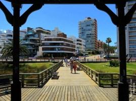MSC Poesia Punta Del Este 2014 (40.2)