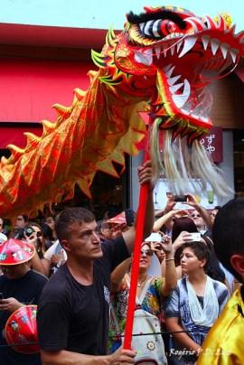 Ano Novo Chines 2015 Liberdade (13)