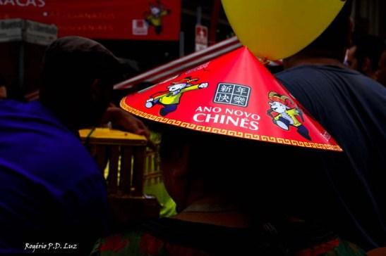 Ano Novo Chines 2015 Liberdade (21)