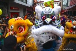 Ano Novo Chines 2015 Liberdade (25)