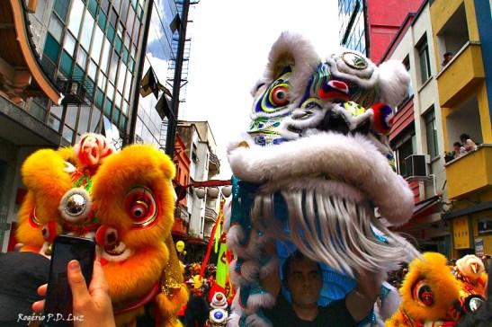 Ano Novo Chines 2015 Liberdade (26)