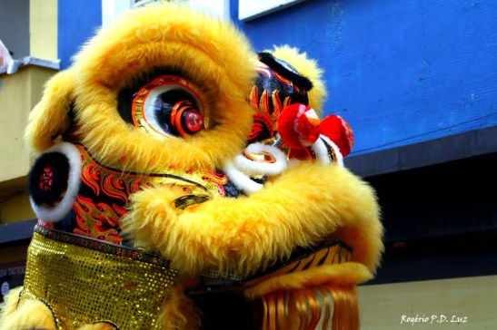 Ano Novo Chines 2015 Liberdade (29.1)
