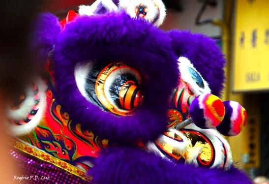 Ano Novo Chines 2015 Liberdade (29)