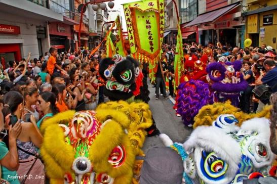 Ano Novo Chines 2015 Liberdade (30)
