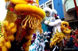 Ano Novo Chines 2015 Liberdade (32.1)