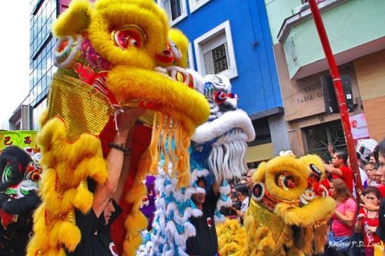 Ano Novo Chines 2015 Liberdade (32)