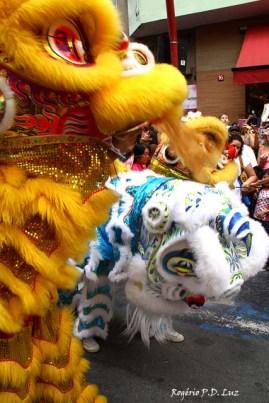 Ano Novo Chines 2015 Liberdade (33)