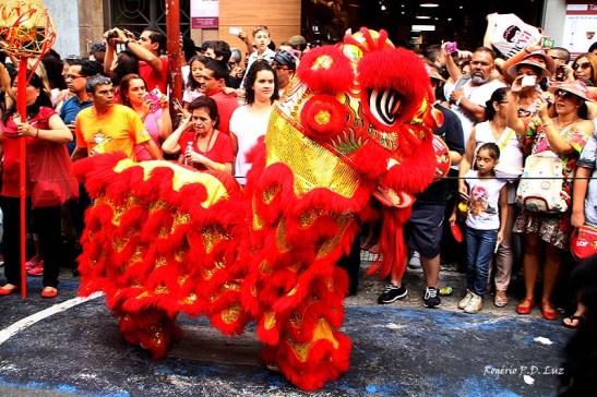 Ano Novo Chines 2015 Liberdade (35)