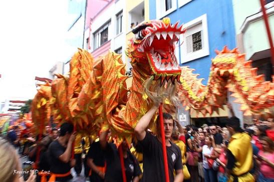 Ano Novo Chines 2015 Liberdade (39)
