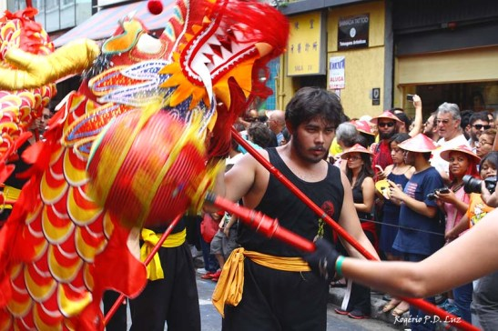 Ano Novo Chines 2015 Liberdade (41.1)