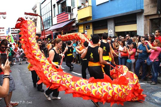 Ano Novo Chines 2015 Liberdade (42)