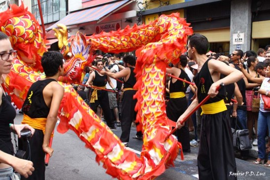 Ano Novo Chines 2015 Liberdade (43.1)