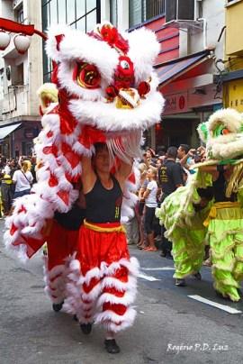 Ano Novo Chines 2015 Liberdade (46)