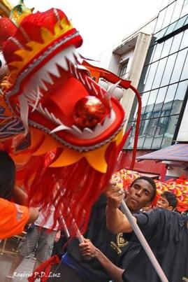 Ano Novo Chines 2015 Liberdade (52)