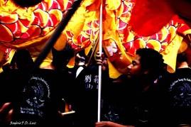 Ano Novo Chines 2015 Liberdade (53.1)
