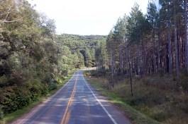 Canela estrada 02