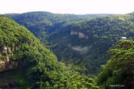 Canela Parquedo Caracol 04