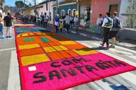 Corpus Christi 2015 Santana Parnaiba (04)