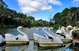 Gramado Lago Negro.jpg