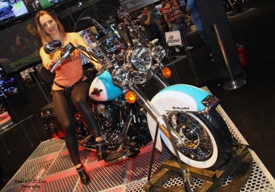Salao 2 Rodas 2015 . Harley Davidson 03