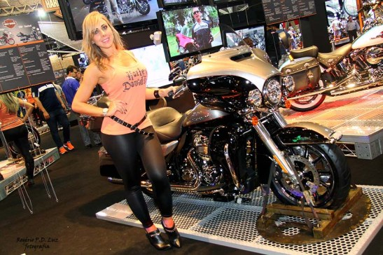 Salao 2 Rodas 2015 . Harley Davidson 05.0