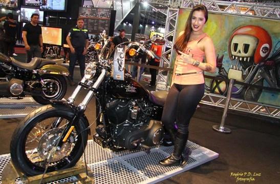 Salao 2 Rodas 2015 . Harley Davidson 14