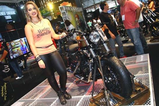 Salao 2 Rodas 2015 . Harley Davidson 16