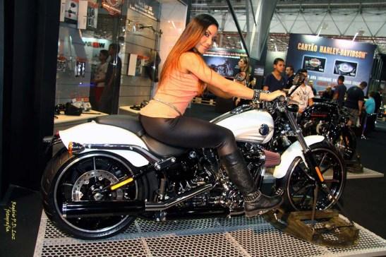 Salao 2 Rodas 2015 . Harley Davidson 20.00