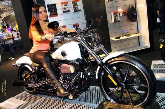 Salao 2 Rodas 2015 . Harley Davidson 20.01
