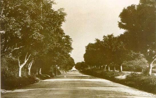 1900年彌敦道 Nathan Road