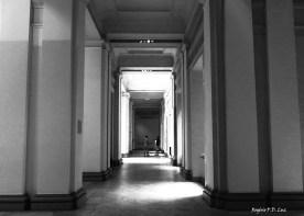 Pinacoteca de Sao Paulo 01