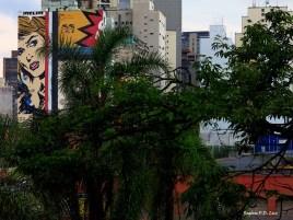 Pinacoteca de Sao Paulo 25