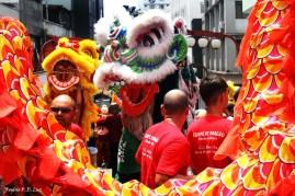 Sao Paulo festa Ano Novo Chines 2016 14