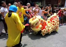 Sao Paulo festa Ano Novo Chines 2016 38