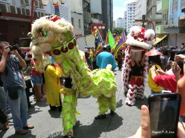 Sao Paulo festa Ano Novo Chines 2016 40