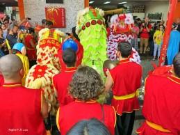 Sao Paulo festa Ano Novo Chines 2016 68