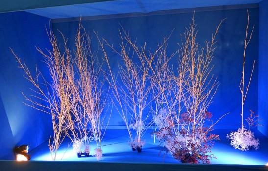 Ikebana arte do Japao 11