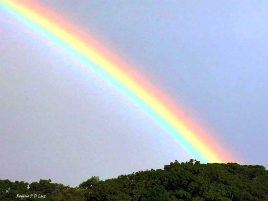 sitio-arco-iris-out-2016-02