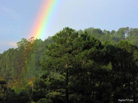 sitio-arco-iris-out-2016-05