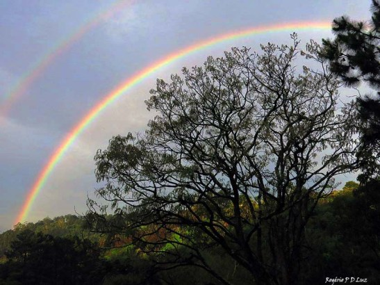 sitio-arco-iris-out-2016-06